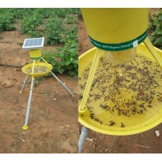 Solar Insects Trap
